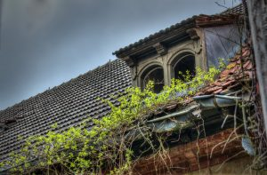 Plants collapse the roof of a Beelitz hospital building